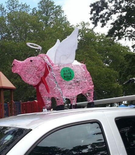 Patchouli the Pig